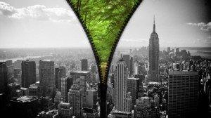 Communication environnementale dans إعلام heart_of_the_city_1080-300x168